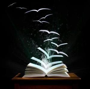 libros pájaro