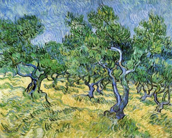 Van Gogh - Olive Grove (1889)