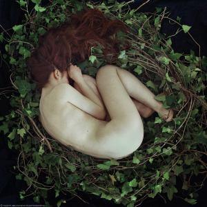 Marta Bevacqua - the nest