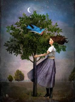 Christian Schloe - A Bluebird's Song